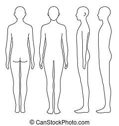 corps, humain, contour, côté, dos, devant