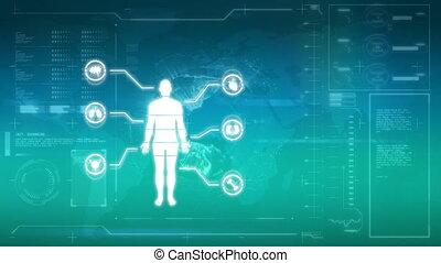 corps, illustration, humain, orgue, étiquettes