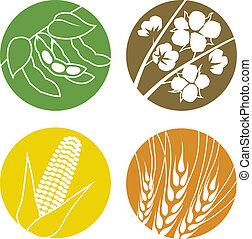 coton, maïs, blé, graines soja