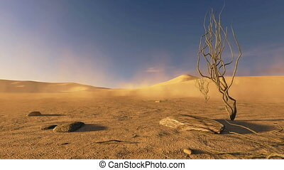 coucher soleil, arbres, mort, désert
