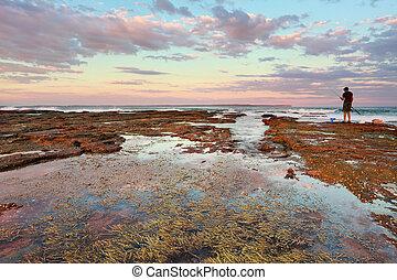 coucher soleil, australie, nsw, vincentia