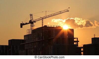 coucher soleil, crane.