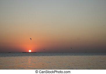 coucher soleil, mer, temps