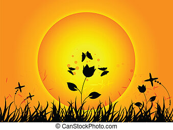 coucher soleil, nature