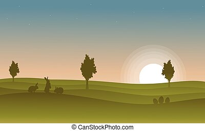 coucher soleil, silhouette, lapin