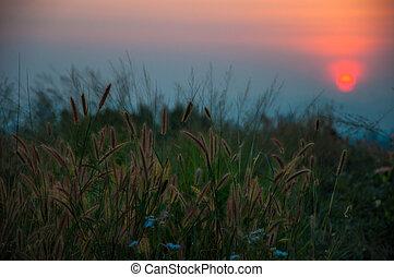 couchers de soleil