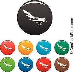 couleur, australien, ensemble, pie, icônes