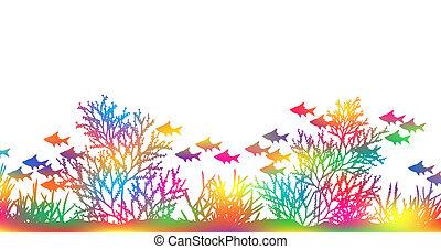 couleur, corail