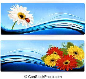 couleur, flowers., bannières, vector., nature
