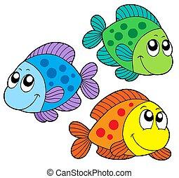 couleur, mignon, poissons