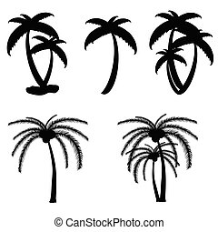 couleur, noir, paume, vecteur, arbre