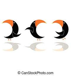 couleur perroquet, trois, illustration, vecteur, noir