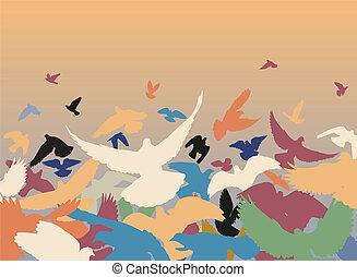 couleur, pigeons