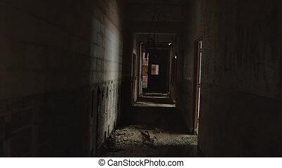 couloir, apocalyptique, misérable, terreur