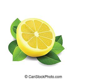 coupé, blanc, citron, isolé
