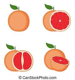 couper, entier, fruit, pamplemousse, moitié, vecteur, illustration
