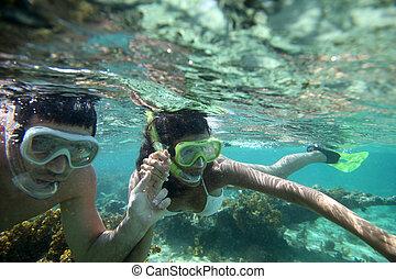 couple, antilles, eaux, snorkeling