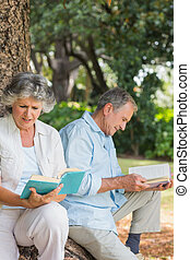 couple, arbre, livres, heureux, lecture, plus vieux, coffre, ensemble, séance