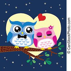 couple, illustration, hibou