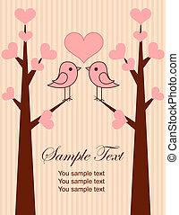 couple, mignon, oiseaux