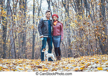 couple, parc, promenade chien, automne, avoir