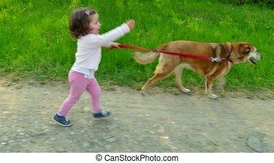 courant, peu, chien, girl, enfant