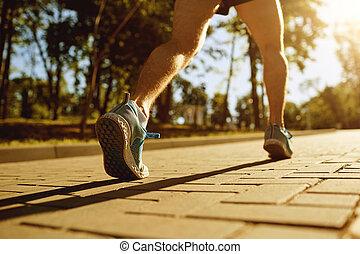 coureur, piste, jambes, parc, sunset.