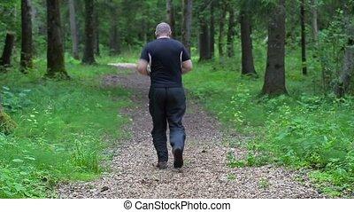 coureur, suivez passage, forêt, lentement