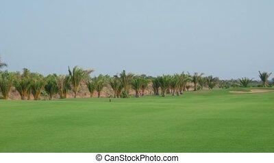 cours, golfeur, sourire, golf, homme