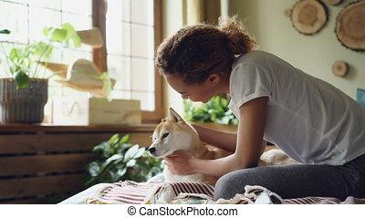 course, jeune, chambre à coucher, animaux, aimable, mélangé, fenetres, séance, gens, grand, shiba, interior., lit, moderne, dame, concept., joli, caresser, inu, chien