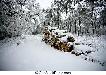 couvert, côté, journaux bord, route, neige