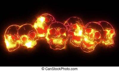crâne, crânes, champ, os, peu profond, vidéo, crossbones., humain, profondeur