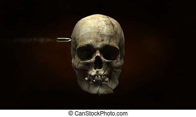 crâne, morceaux, explosé