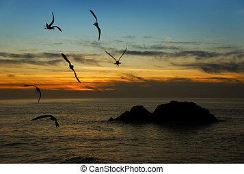 crépuscule, californie