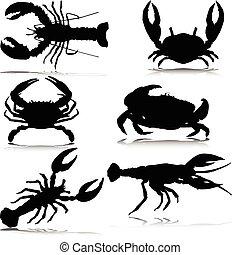 crabes, seulement, vecteur, silhouettes, mer