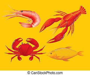 crevette, fish, crabe, seafood:, écrevisse