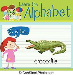 crocodile, c, lettre, flashcard