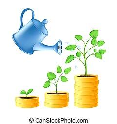 croissance, économie, concept, fond, stages., plante, or, isolé, financier, verse, investissement, arrosage, eau, argent, blanc vert, boîte, illustration, vecteur, pièces., business, pile