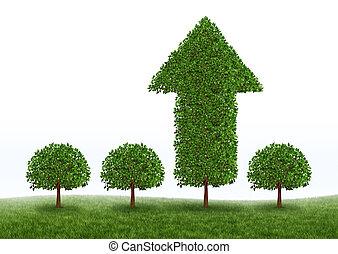 croissance, succès financier