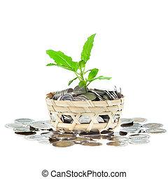 croissant, argent