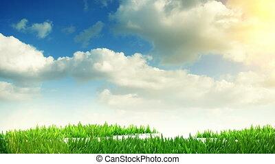 croissant, herbe, arbre