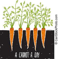 croissant, lettrage, carottes, dessin, rêche