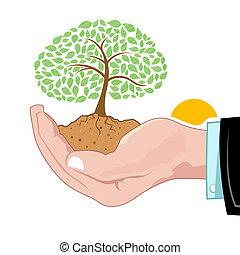 croissant, naturel, arbre, main