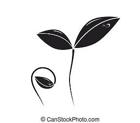 croissant, plante, silhouette