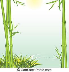 croissant, rivage, vert, bambou