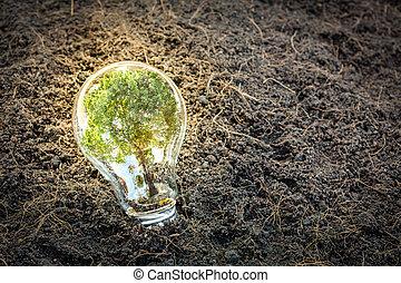 croissant, usine ampoule, intérieur