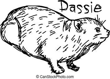 croquis, hyrax, -, isolé, illustration, dassie, lignes, vecteur, arrière-plan noir, rocher, dessiné, blanc, main, ou
