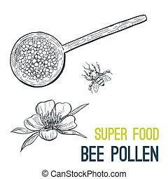 croquis, pollen., nourriture, main, vecteur, dessiné, abeille, super