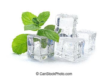 cubes, menthe, glace
