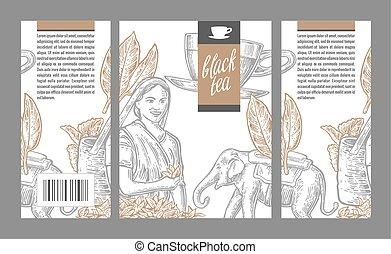 cueilleur, box., tasse, thé, isolé, illustration, feuilles, vecteur, thé noir, vendange, femme, conditionnement, elephant., étiquette, gravé